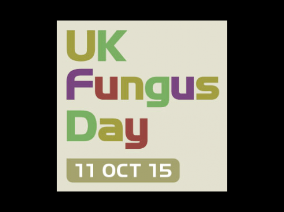 UK Fungus Day website brings academics, educators, enthusiasts and families together